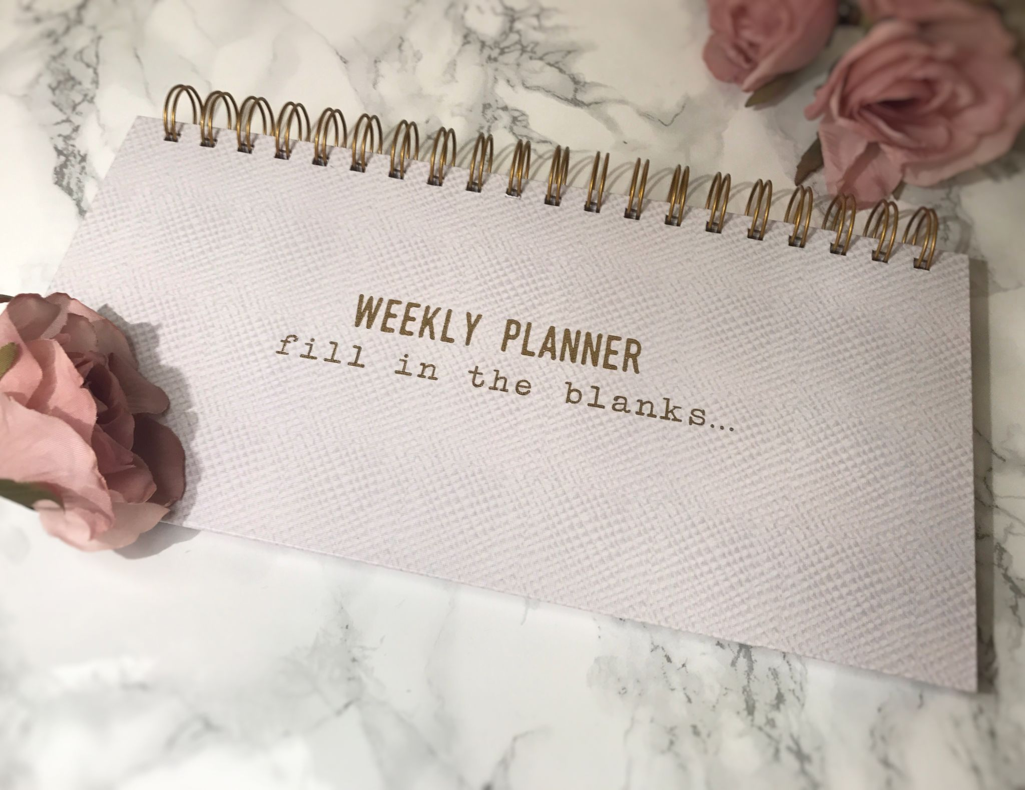 next weekly planner saffy dixon